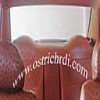 ostirchL.Car Interior